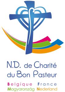 NDCP-pays-V